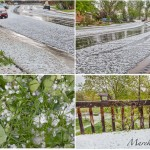 street covered by hailstones in Fort Collins, Colorado